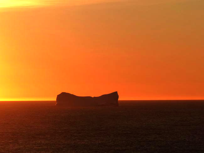 Eisberge in Neufundland