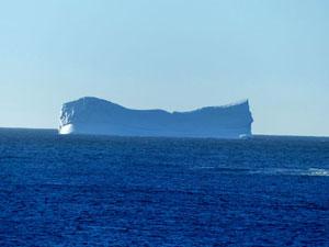 neufundland eisberg